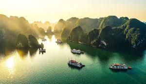 #49plus Vietnam